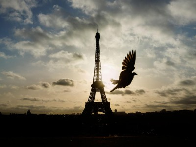 Eiffel-Tower-AP